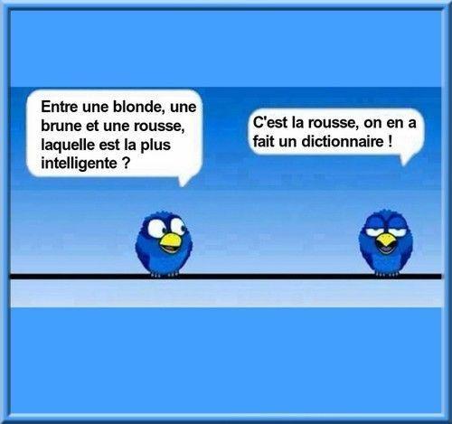 Humour du jour !!